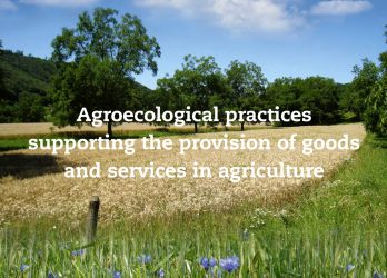 Agroecological practices
