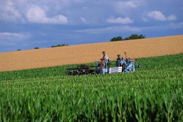 International agroecology Short course – May 2nd to 5th in Italy