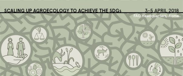 FAO's second International Agroecology Symposium