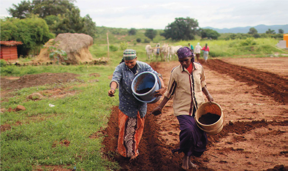IMG-Publication-Via-Campesina-Africa