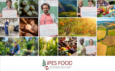 Towards a common food policy for the European Union