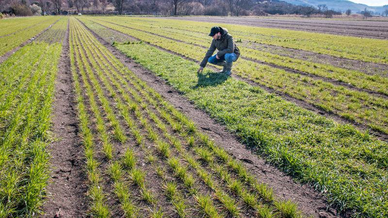 Press release : EU Farm to Fork and Biodiversity strategies