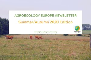 The Summer/Autumn 2020 newsletter of agroecology Europe