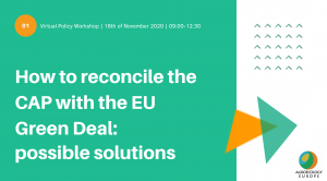"""Virtual Policy Workshop: """"How to reconcile the Common Agriculture Policy (CAP) with the EU Green Deal: possible solutions?"""", Wednesday 18th of November 2020"""