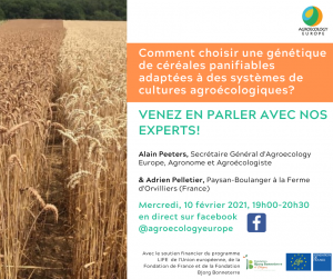 Next AEEU Webinar on how to choose a genetics of breadcereals adapted to agroecological systems to be held on Wednesday 10th of February 2021 in French on our Facebook page!