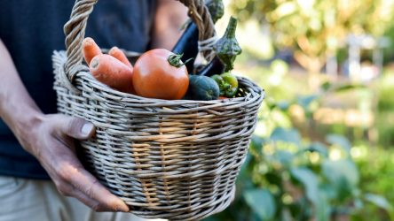 Finance and Agroecology